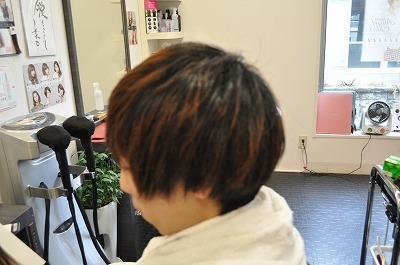 DSC_0238.jpg